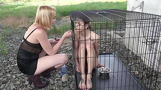 aurora predominate her sub suzi public in cage